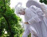 Программа «Ангелы»